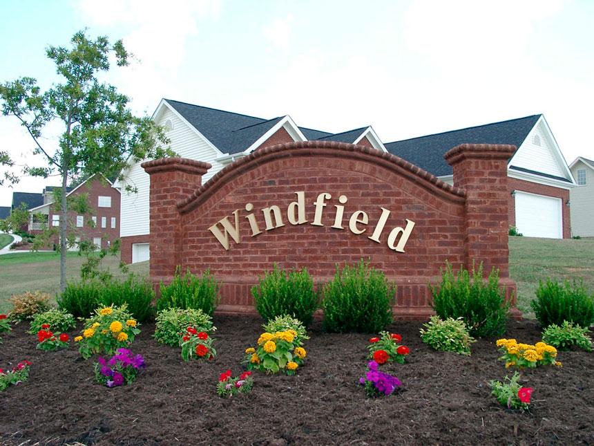 Windfield1